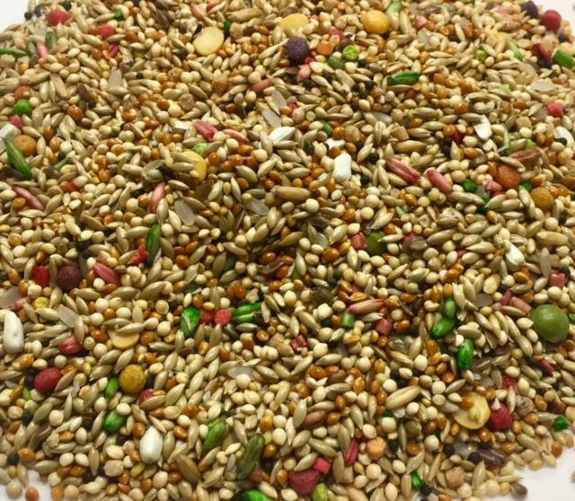 World of Birds- Gourmet Parakeet Mix