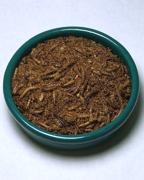 Insect Blends